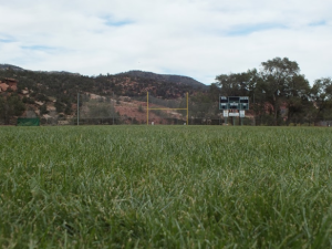Manitou Springs' legendary field